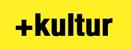 BarCamp pluskultur Logo
