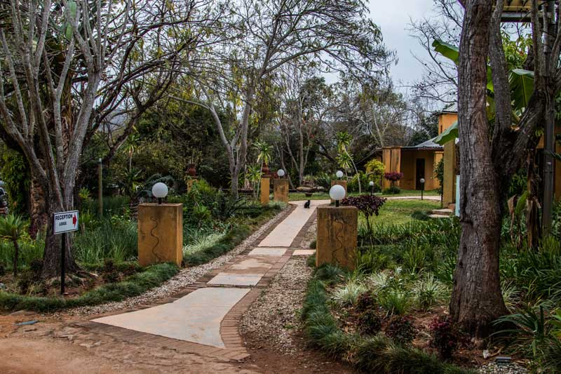 Gecko Lodge - South Africa vacation