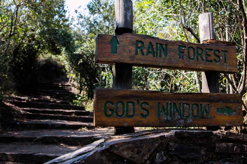 sign rain forest - South Africa vacation