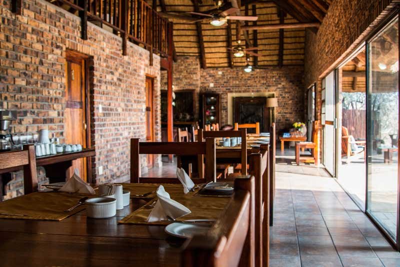 South Africa - Gomo Gomo Game Lodge
